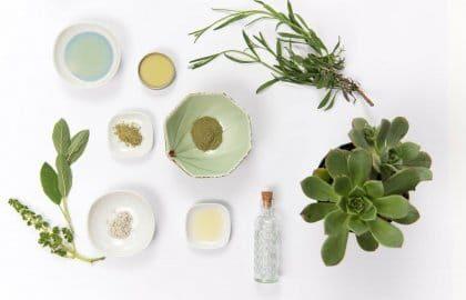 מפיצי ריח – חייב בכל עסק